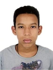 Vinicius Pereira Fernandes da Gama